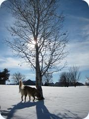 Winter08-09 005