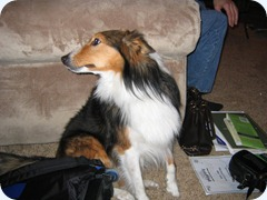 january 21 2006 024
