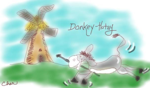 Donkey-Hotay1