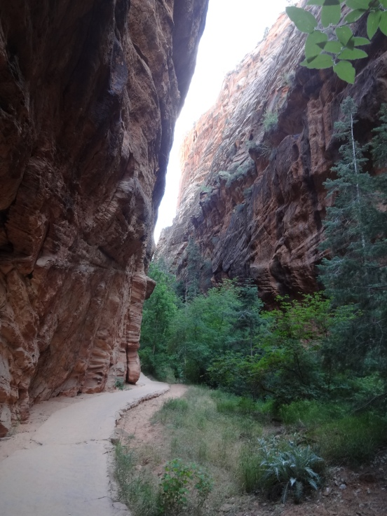 Paved sandstone trail going up Refrigerator canyon (before you get to Walter's Wiggles)