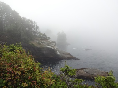 Foggy mists at Cape Flattery