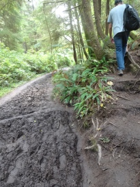 muddy hike--we had to bypass these sections