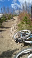 Trail to Loon Lake, Idaho